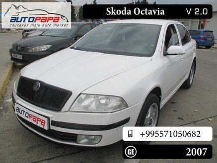 Skoda Octavia 6 571 Gel 2007 560460 Autopapa Caucasus Main